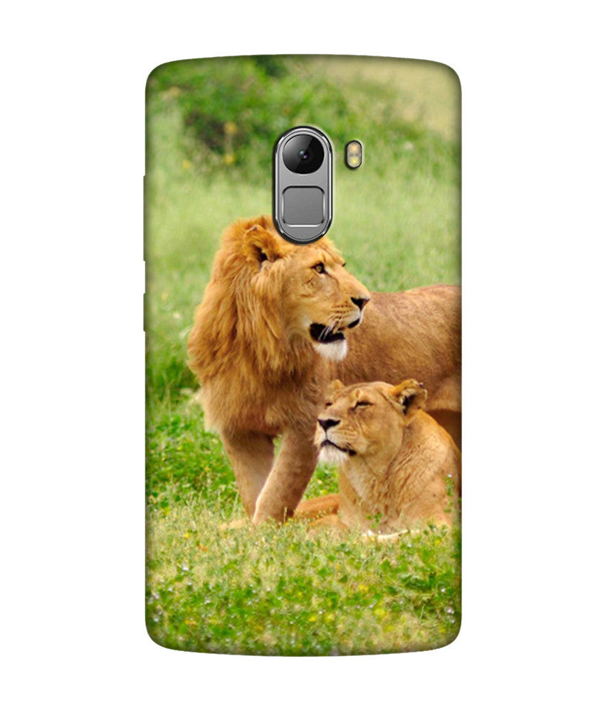 Creatives 3D Lion Lenovo Case
