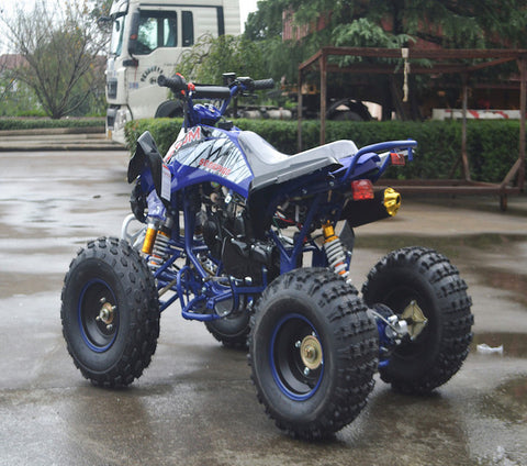 Gas ATV's (110cc-350cc)