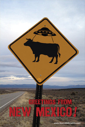 UFO Cow Sign New Mexico Postcard