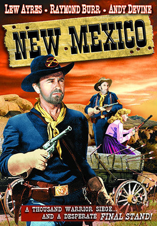 New Mexico Movie Poster Postcard