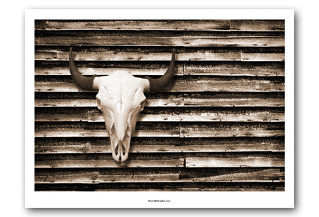 Buffalo Skull on Barn Wall Art Print