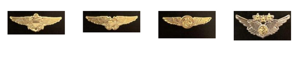US Navy/Marines Wings Pins