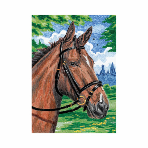 Color By Number Kit - Horse, Horse Craft Kit, Horse Coloring Book