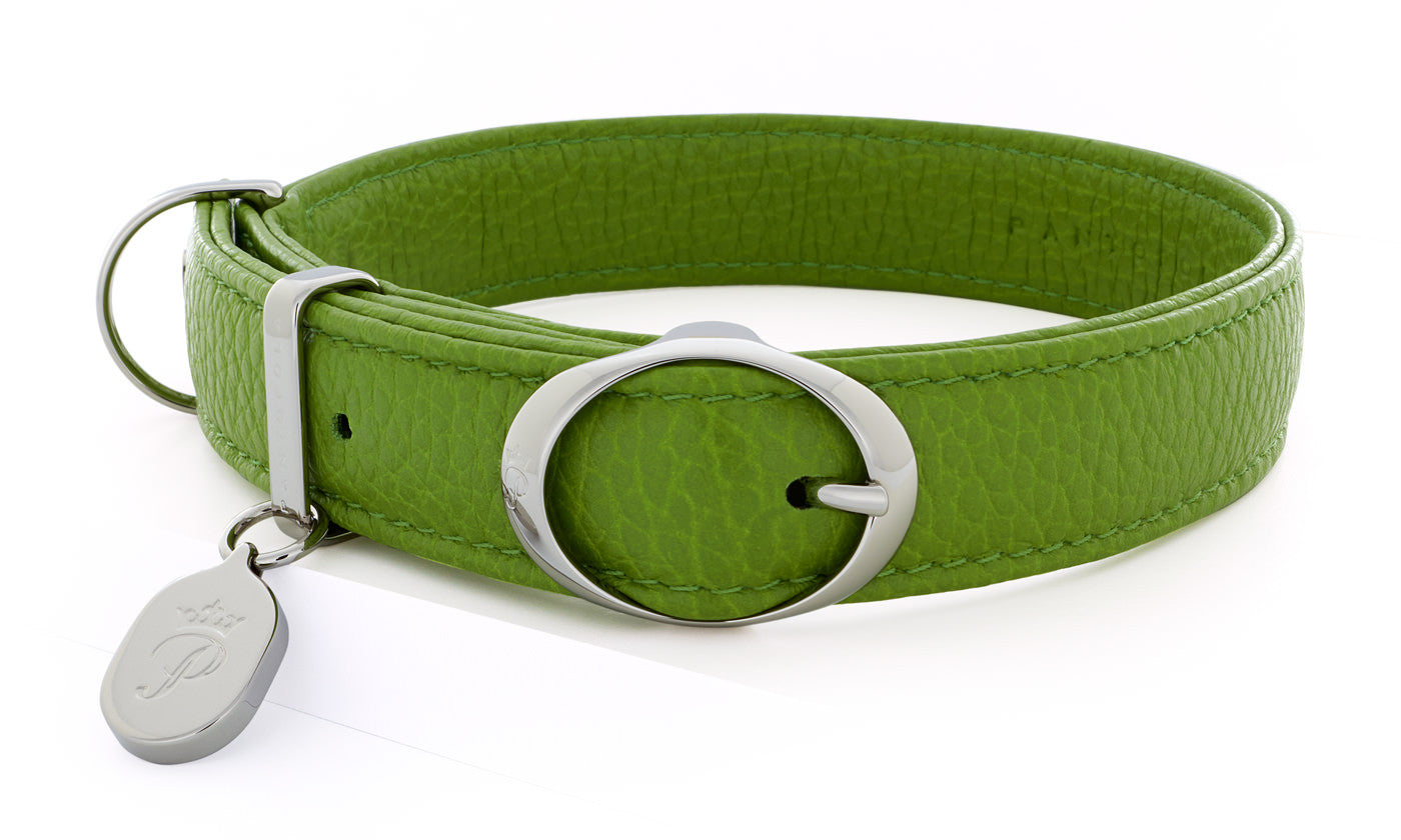 Pantofola Italian luxury leather dog collar in Pistacchio, Medium