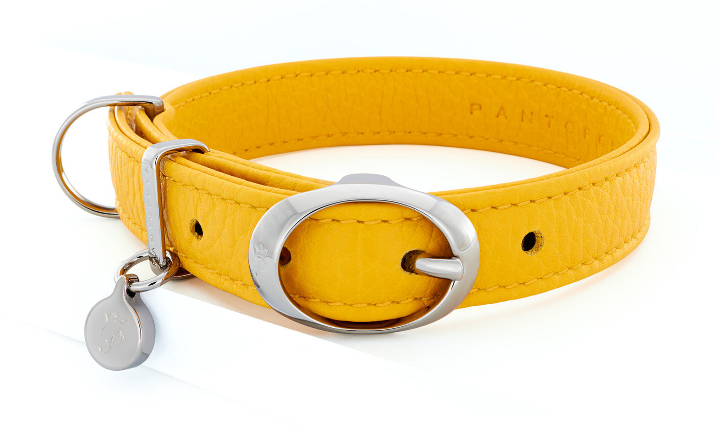 Pantofola Italian luxury leather dog collar in Limone, Small