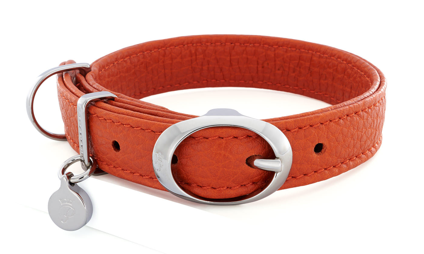 Pantofola Italian luxury leather dog collar in Tarocco, Small
