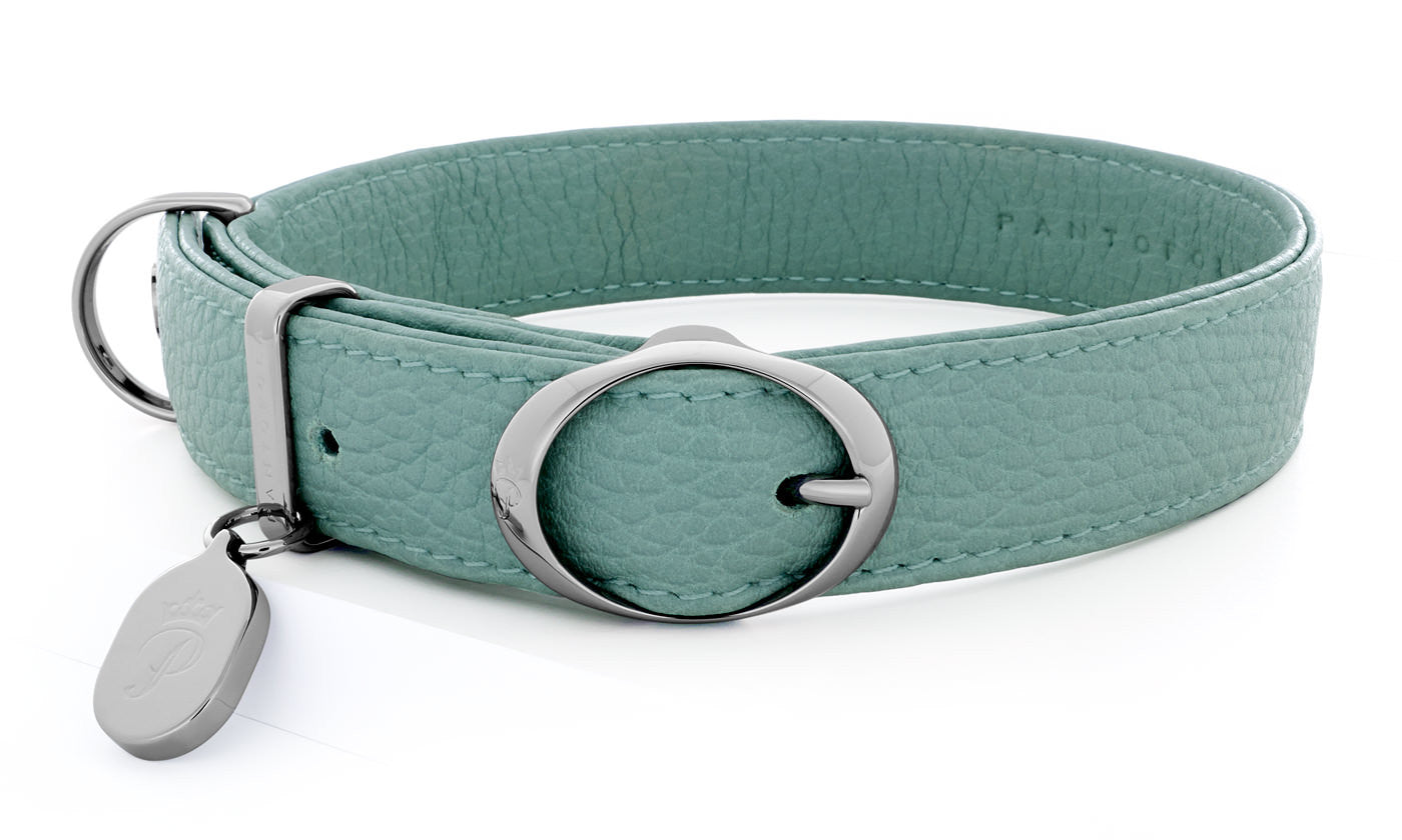 Pantofola Italian luxury leather dog collar in Celeste, Medium