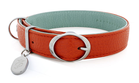 Pantofola Italian luxury leather dog collar in Tarocco / Celeste, Medium