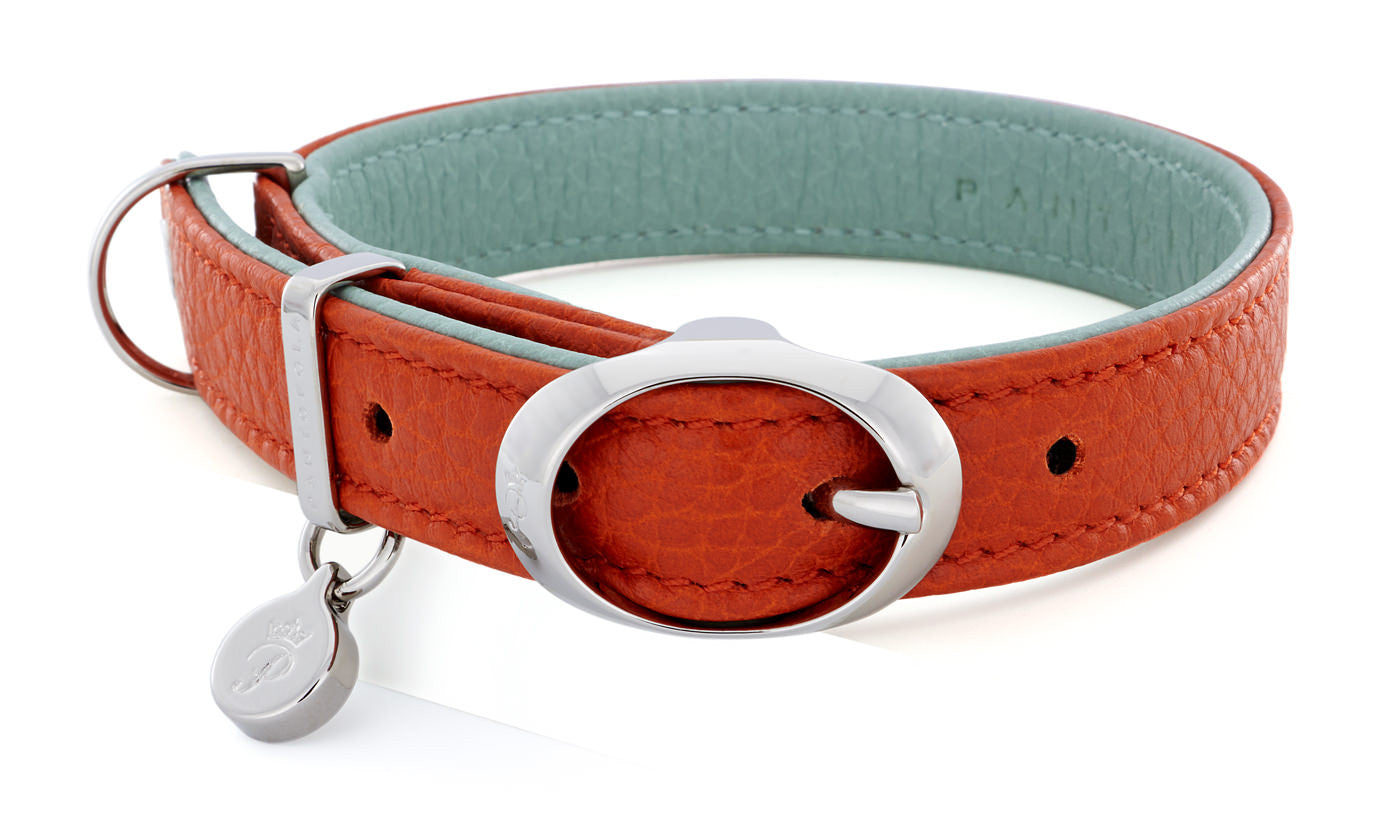 Pantofola Italian luxury leather dog collar in Tarocco / Celeste, Small