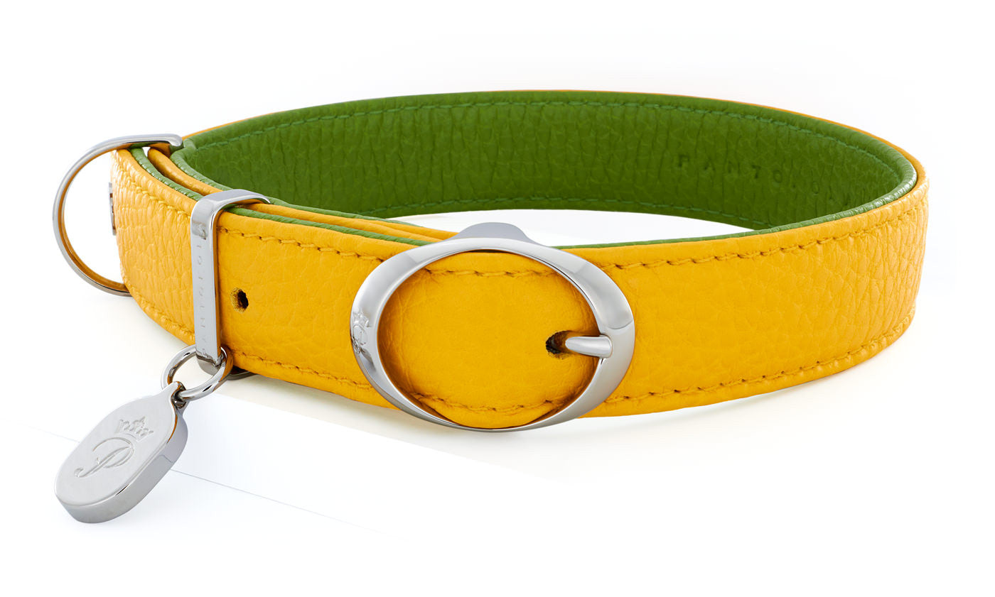 Pantofola Italian luxury leather dog collar in Limone and Pistacchio, Medium
