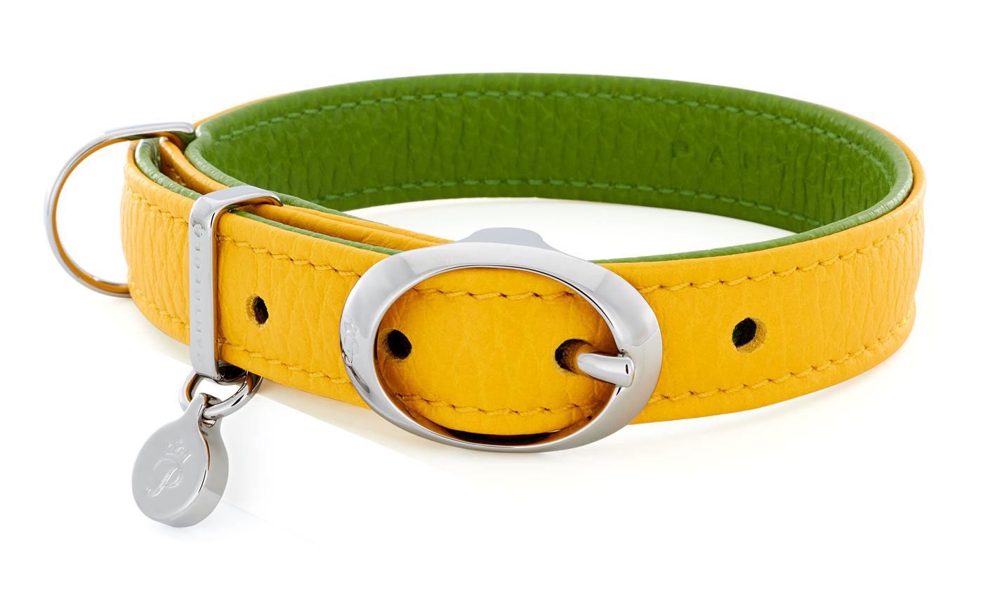 Pantofola Italian luxury leather dog collar in Limone / Pistacchio, Small
