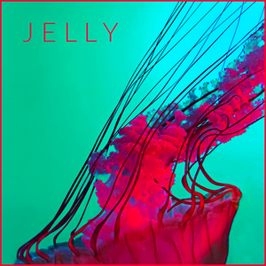 Collier Jelly