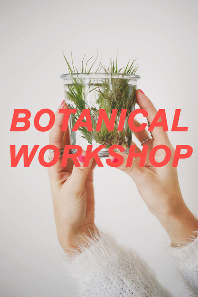 Botanical Workshop with Valerie Jurado!
