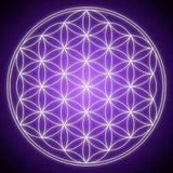The Magic of the Flower of Life and What it means to You...