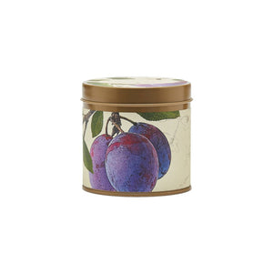 Rosy Rings Wild Plum & Cannabis Signature Tin Candle