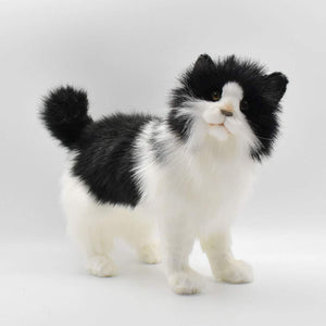Black and White Cat by Hansa