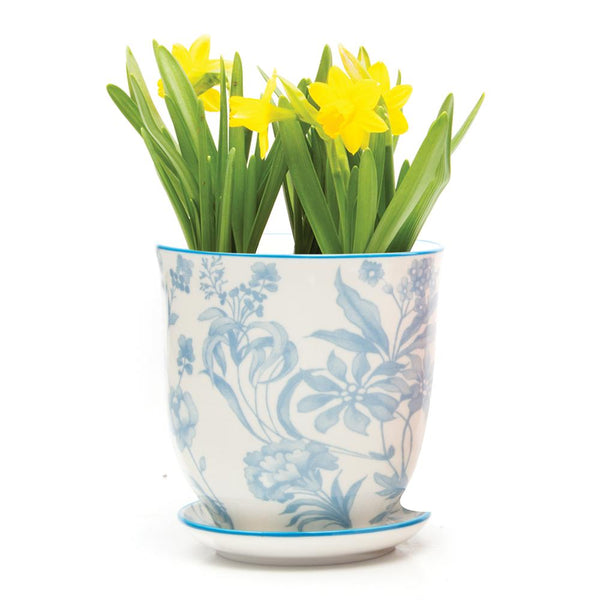 Chive Liberte Porcelain Flower Pot