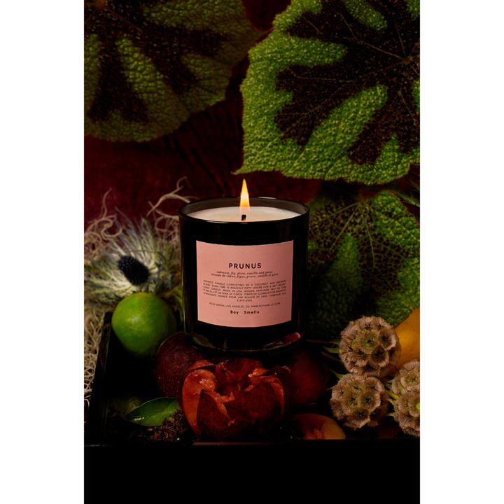 Boy Smells Candle - Prunus - Wanderlustre
