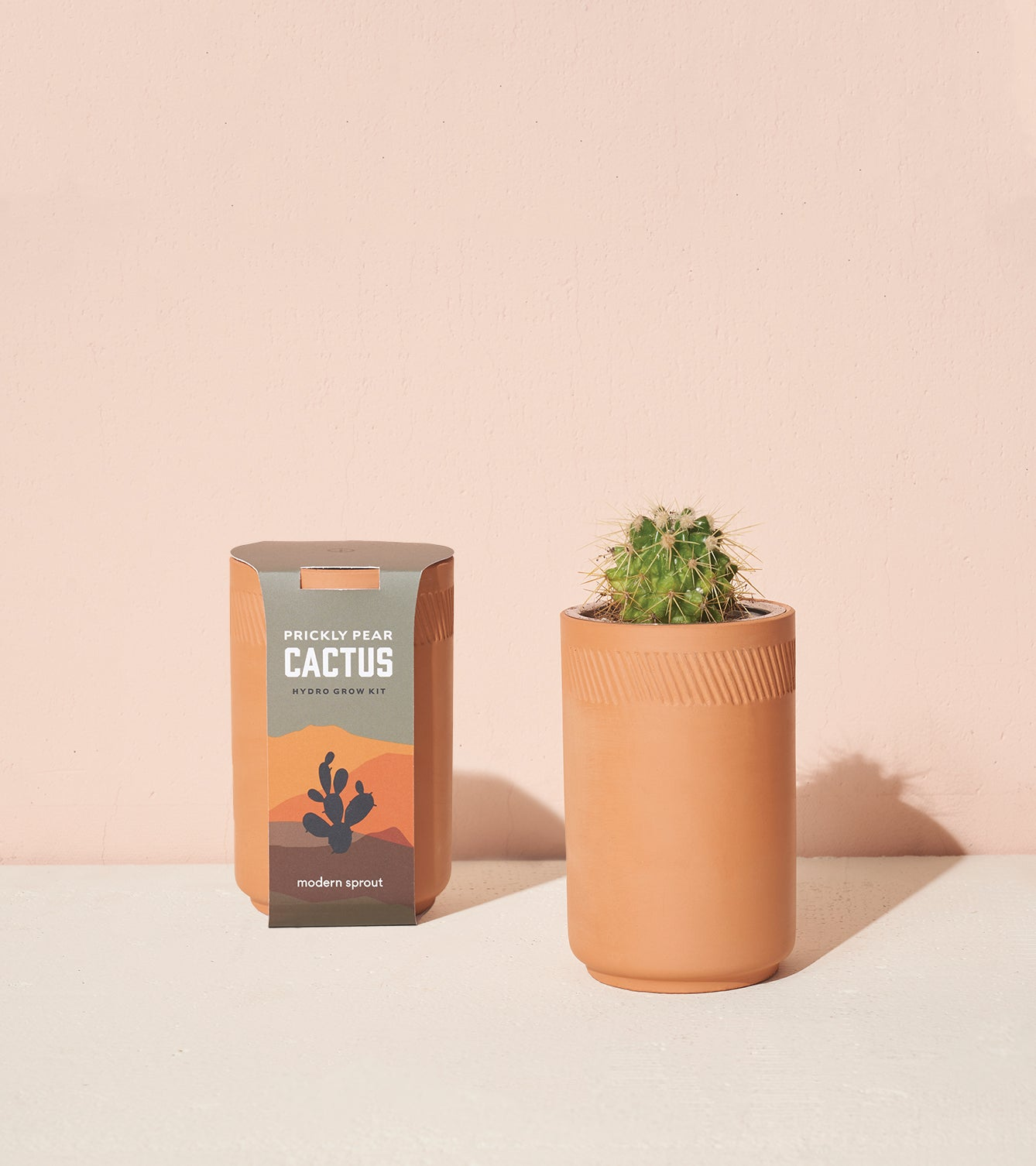 Terracotta Grow Kits