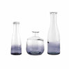 Glass Bottle with Ombre Smoke Decoration (Set of 3)