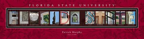 College Campus Art - Florida State University-Art-Here Comes The Bling™