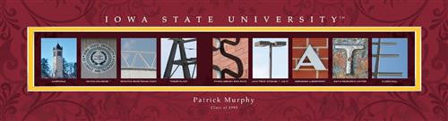 College Campus Art - Iowa State University-Art-Here Comes The Bling™