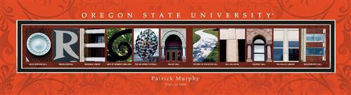 College Campus Art - Oregon State University-Art-Here Comes The Bling™