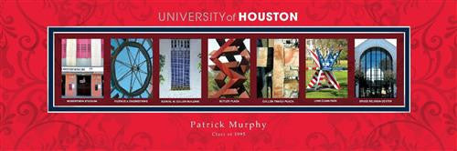 College Campus Art - University of Houston-Art-Here Comes The Bling™