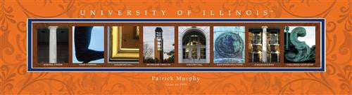 College Campus Art - University of Illinois-Art-Here Comes The Bling™