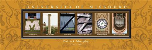 College Campus Art - University of Missouri-Art-Here Comes The Bling™