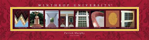College Campus Art - Winthrop University-Art-Here Comes The Bling™