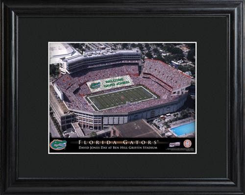 College Stadium Print with Wood Frame - FLORIDA-Art-Here Comes The Bling™