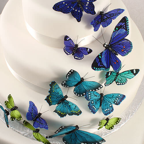 Hand Painted Butterfly Cake Decor Set in Oasis Blues-Cake Toppers-Here Comes The Bling™