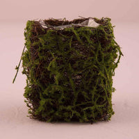 Mini Moss & Wicker Planters (Set of 4)-Decor-Vase-Here Comes The Bling™