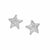 Rhodium  CZ Star Earrings
