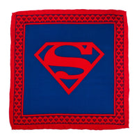 Superman Shield Silk Pocket Square-Pocket Square-Here Comes The Bling™