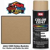 SEM BUCKSKIN Colourcoat Vinyl Aerosol 6004-VAR1 (Darker and Redder then 6006)