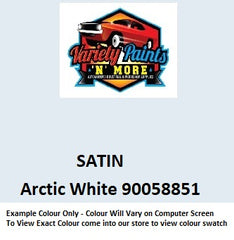 Variety Paints Arctic White 90058851 Powdercoat Spray Paint 300g