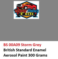 BS 00A09 Storm Grey British Standard Enamel Aerosol Paint 300 Grams
