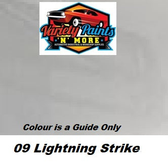 O9 OR 09 Lightning Strike FORD Acrylic Touch Up Paint 300 Grams