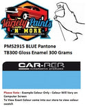 PMS2915 Blue Pantone Custom Spray Paint Enamel Direct Gloss Spray Can 300 Grams