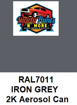 RAL 7011 Iron grey Custom Mixed 2K Spray Paint 300 Gram