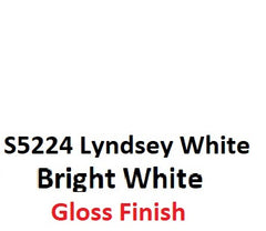 S5224 Lindsey White  GLOSS 2K Aerosol Paint 300 Grams