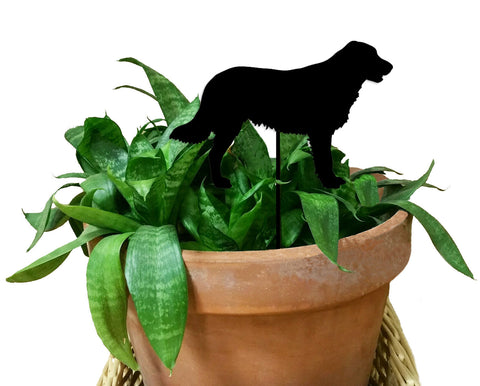 Flat Coated Retriever Ornament or Plant Stake