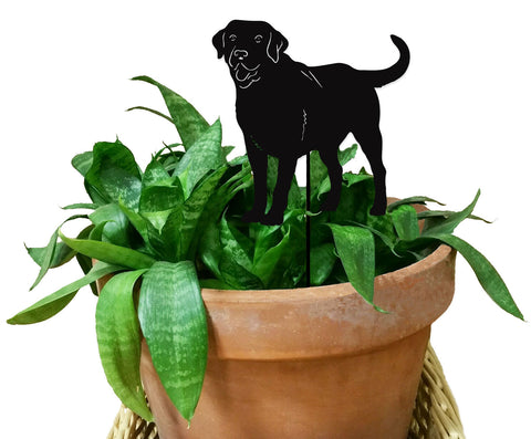Decorative Dog Planter