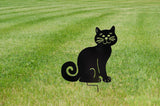 Black Ziggly Cat Sitting