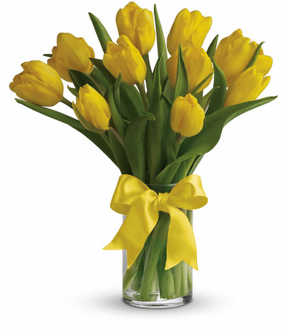 Tulips in Coral Gables. Flowershops in Coral Gables. Send flowers to Coral Gables.