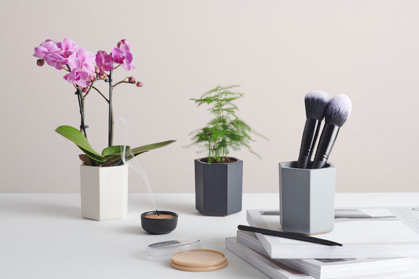 Hexagonal Bamboo Desk Pots