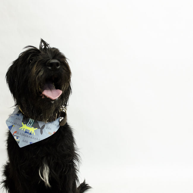 Doggy Scarf in Cotton Poplin Ocean Print