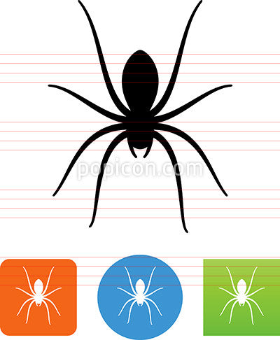 Arachnid Spider Icon
